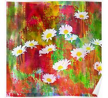 Daisies in an Abstract Red Field Poster