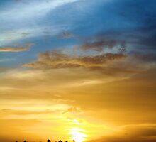 Sunset at Key West 2 by Sheryl Unwin