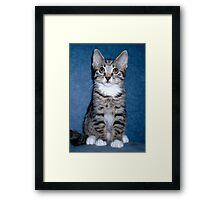Who? Me??....  Framed Print