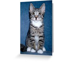 Who? Me??....  Greeting Card