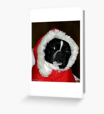 santa zoe Greeting Card