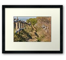 Lonely Warm Walk Framed Print