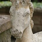 \Horse of Stone by AngelicaL