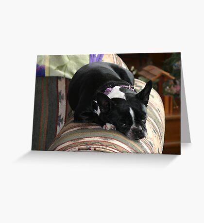 comfy zoe Greeting Card