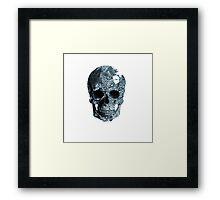 Paisley Skull Framed Print