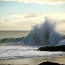 Backwash by Paul Manning