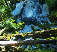 Clear Water falls by goddessteri211