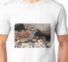 White Throated Sparrow Unisex T-Shirt