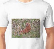 Mink...Cute Eh!!! Unisex T-Shirt