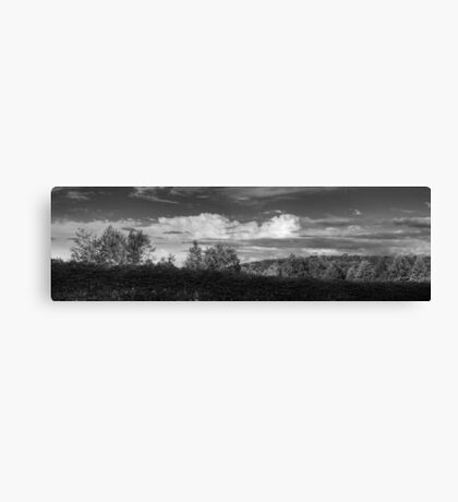 Cloudscape Panorama Canvas Print
