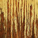 Barren Trees &amp; Summer Showers (abstract) by Laurie Minor