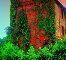 Old building, gone to the wildside by Sharksladie