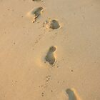 Sandy Footprints - by Heather Ross by Bo-Ross