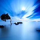 Blue Evening II by Matthew Stewart