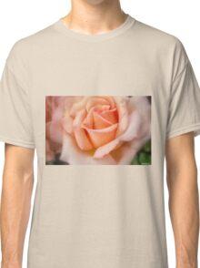 Tenderness! Classic T-Shirt