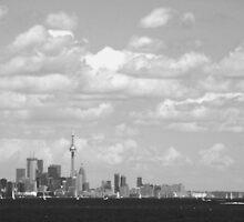my City by Paul Rees-Jones