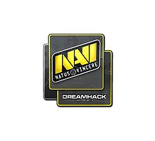 Na'Vi Dreamhack 2014 by Kashmir54