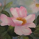 Pretty in Pink by Susan Moss