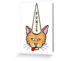 Cats Are Stupid Greeting Card