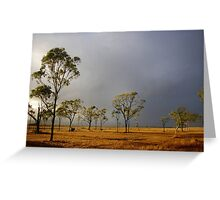 FIRST SUMMER STORM Greeting Card
