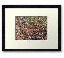 Beaded Gecko Framed Print