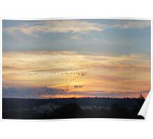 Bird Flying V Sunset Poster
