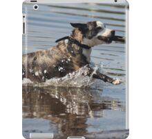 Dog playing 1 iPad Case/Skin
