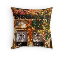 Those were the days....  Donnelly River Village, WA Throw Pillow