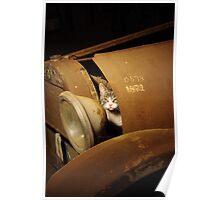 Mechanic Cat Poster