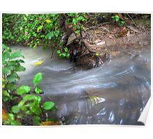 Water stream (Details Enhanced) - Jesmond Bushland Poster