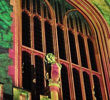 Northern Lights - Bonython Hall Lions and Sheilds by bsn-photography