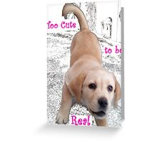 Too cute to be real! Greeting Card