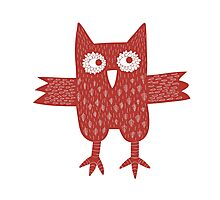 Red Owl Photographic Print