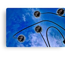 Sky Mirrors Canvas Print
