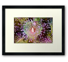 Cathedral Jewel Framed Print