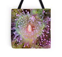 Cathedral Jewel Tote Bag