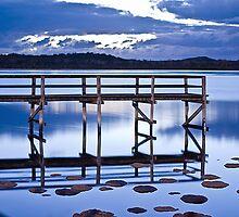 Lake Clifton Thrombolites by Dejezza