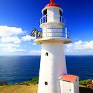 Double Island Point Lighthouse  by SRB1