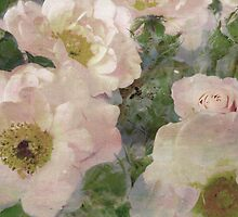 Roses, Roses, Roses. by Vitta