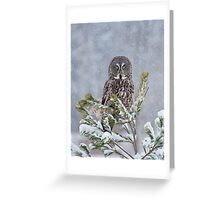 Great Gray Tree Ornament Greeting Card