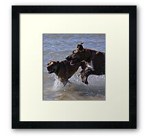 Playing at the beach Framed Print