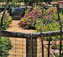Herb Garden at La Purisima Mission by Renee D. Miranda