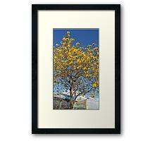 Epcot Tree Framed Print