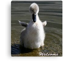 Welcome Cards Canvas Print