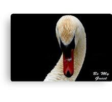 Invitation Cards Canvas Print