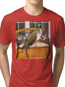 Fine Feathered Neighbor Tri-blend T-Shirt