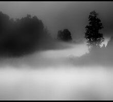 Lake Matheson............. by Imi Koetz