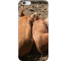 Piggies iPhone Case/Skin