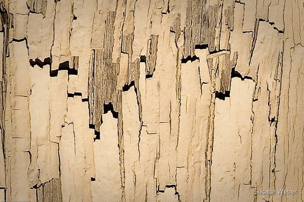 Manhattan canyons by Susana Weber