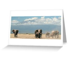 Elephants and Mount Kilimanjaro Greeting Card